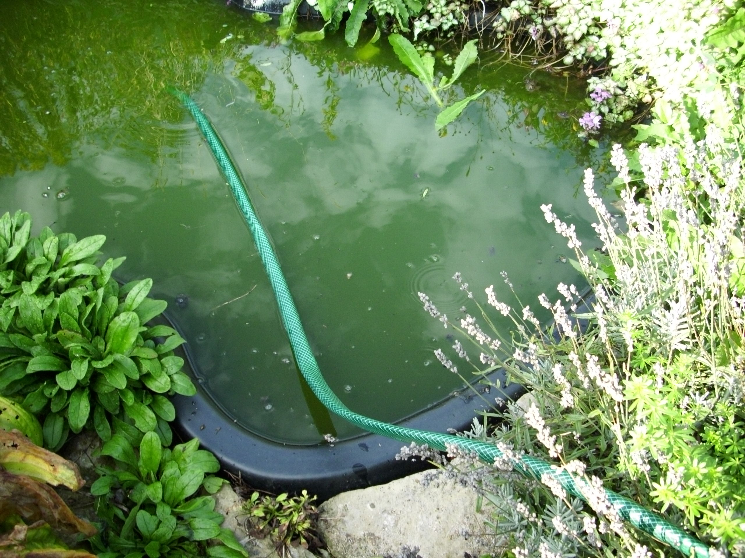 The slide n pump review it 39 s not what you think for Ornamental pond pumps