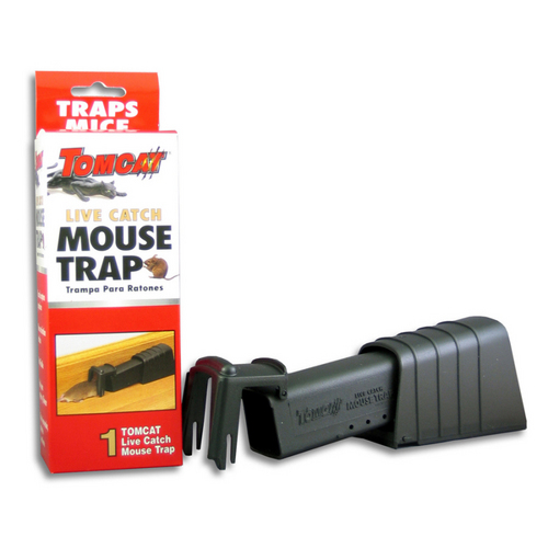 Yellow jackets mc, mouse traps humane home depot, biological fly