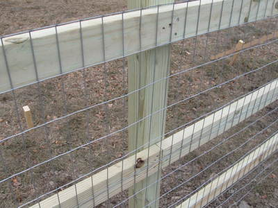 How To Build A Split Rail Wire Mesh Fence Keep Puppies In