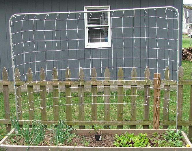 how to build a garden trellis for vegetables
