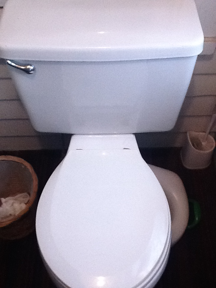 How To Change the Flapper Valve on your Leaky Toilet