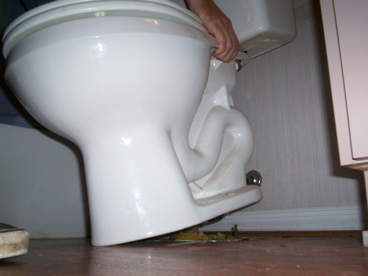 How To Install A Toilet New Delta Toilet Installation