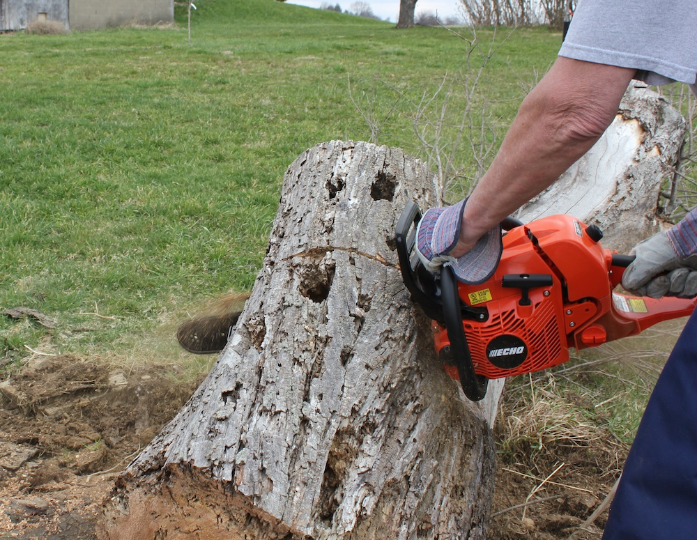 Echo CS590 Timber Wolf Chain Saw Review—Howling In The Woods