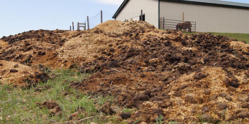 Organic Fertilizer – It's a Bunch of Horse Hockey