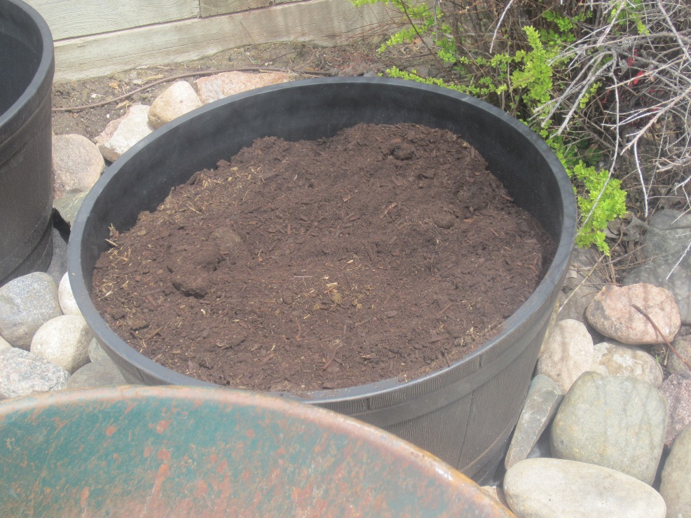 Contain your veggies tips for growing vegetables in pots for Soil king compost
