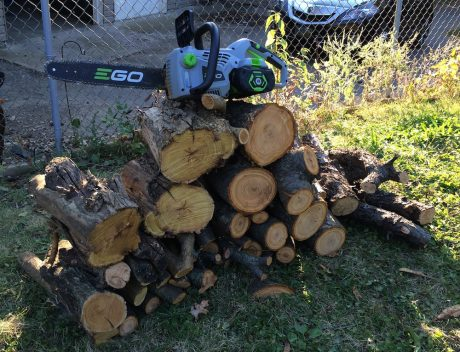 ego 56v chainsaw