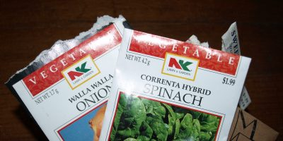 Seed Starting Indoors – A Money Saving Idea