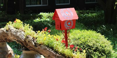 Mailbox Appeal – Pep it up With Plants