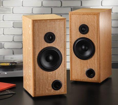diy speaker kit