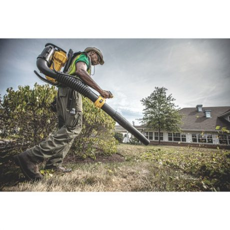 dewalt 40v max outdoor