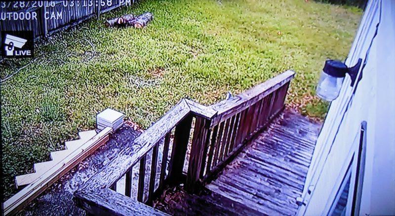 Outdoor cam view