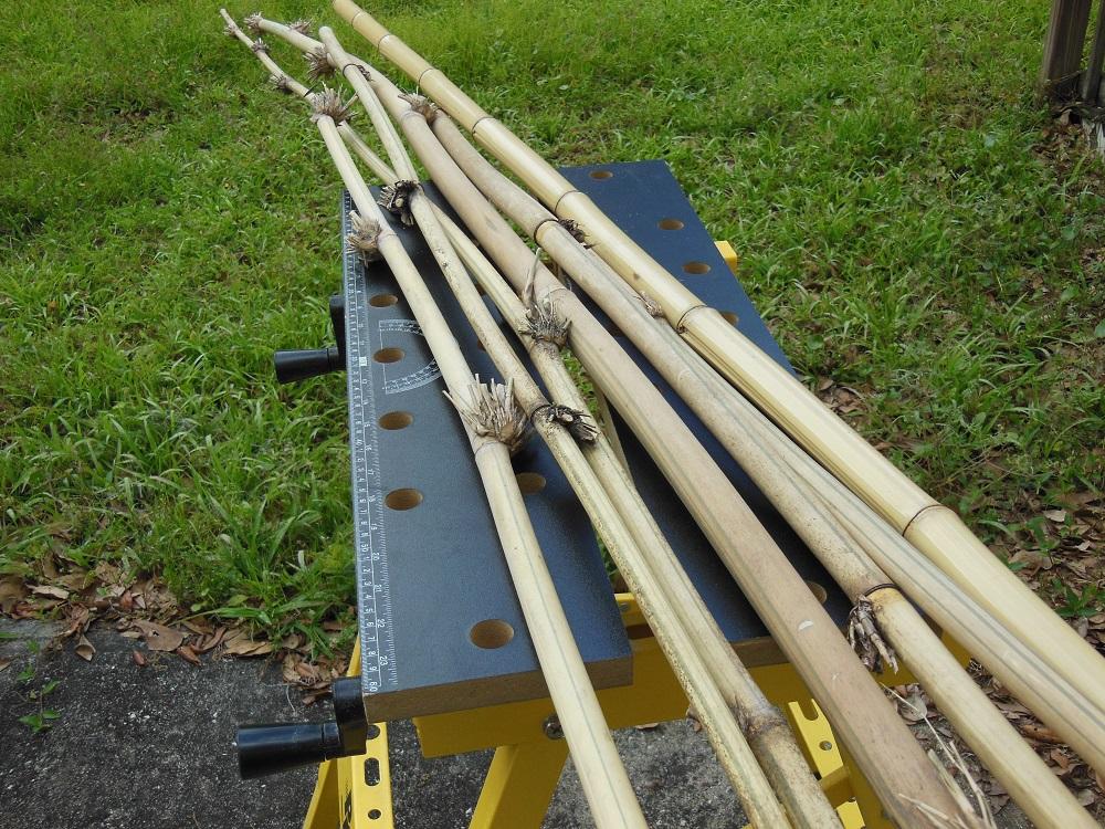 Easily Make A Bamboo Whistle