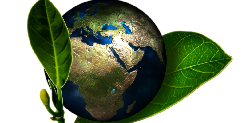 Don't Get Greenwashed – 6 Things you should know About Green Building Materials