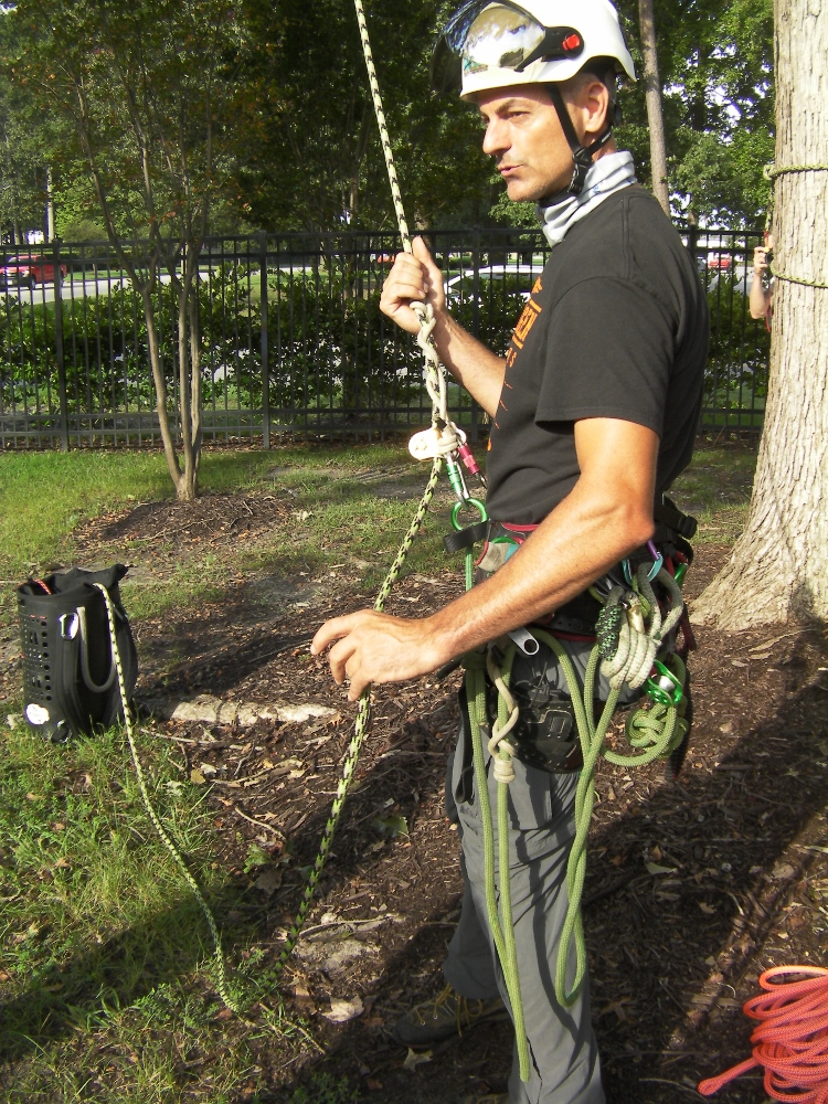 arborist and competitive tree climber Mark Chisholm
