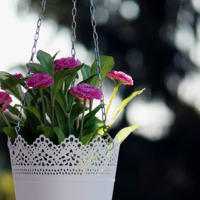 Hang 10 – How to Make A Hanging Basket