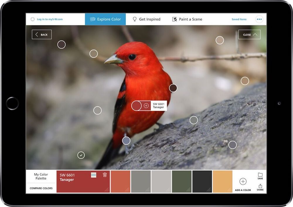 Pinterest and sherwin williams colorsnap visualizer color for Paint color matching app