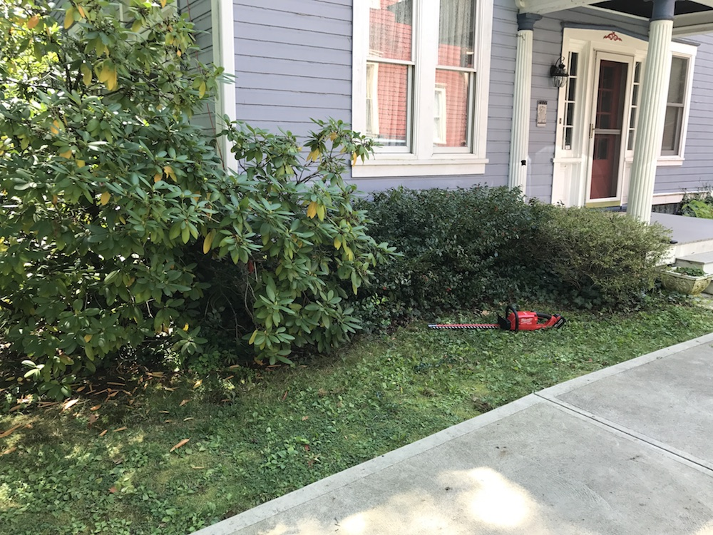 milwaukee m18 hedge trimmer