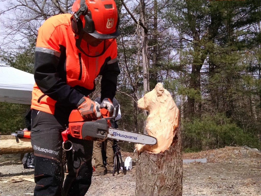 The Buzz About Husqvarna's New Chainsaws - Home Fixated