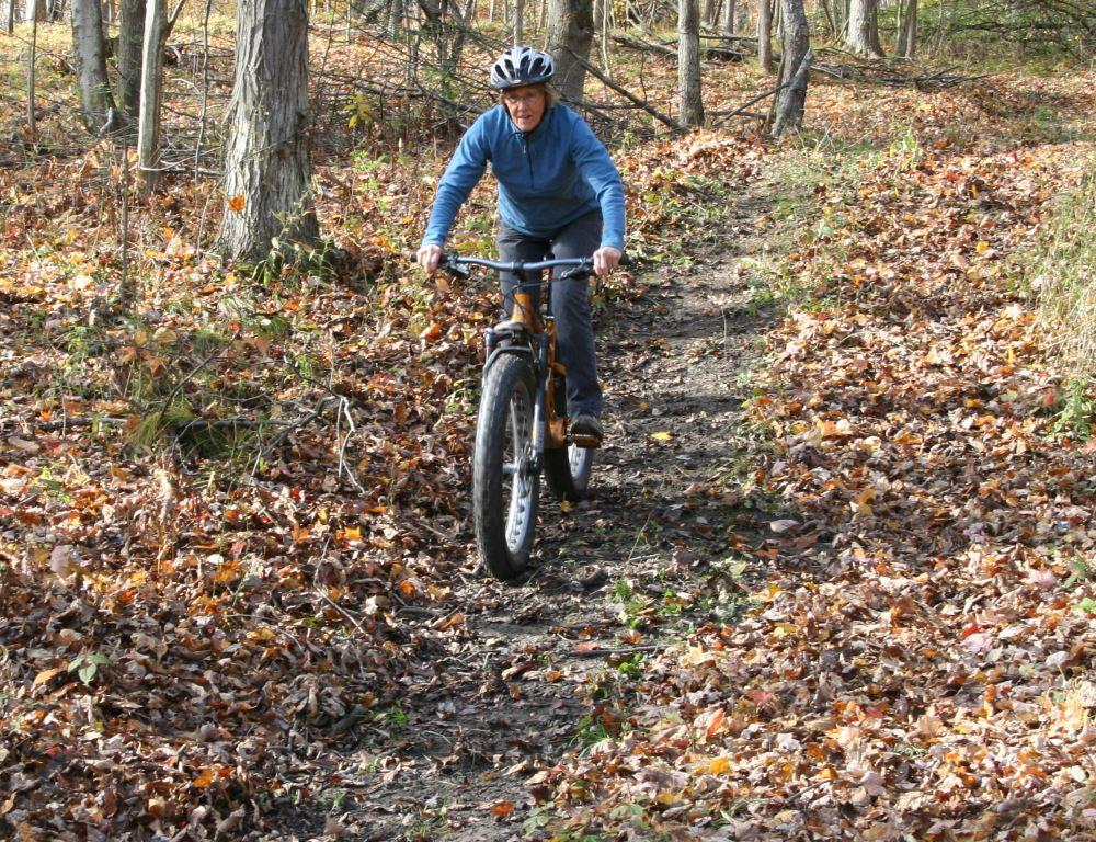 dewalt flexvolt blower clearing a trail